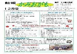 上小鴨(H30.12)